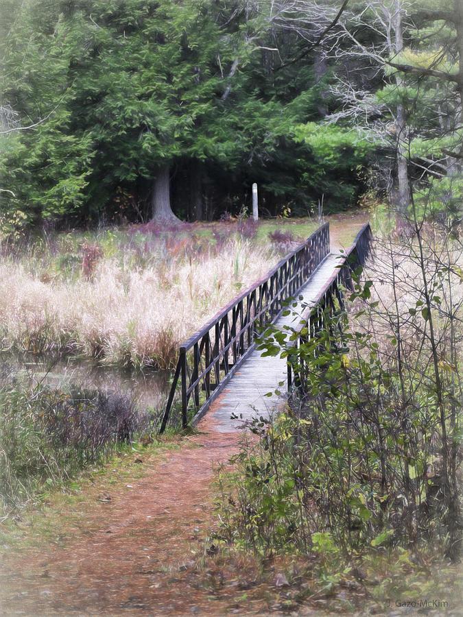 Traversing The Trail Photograph
