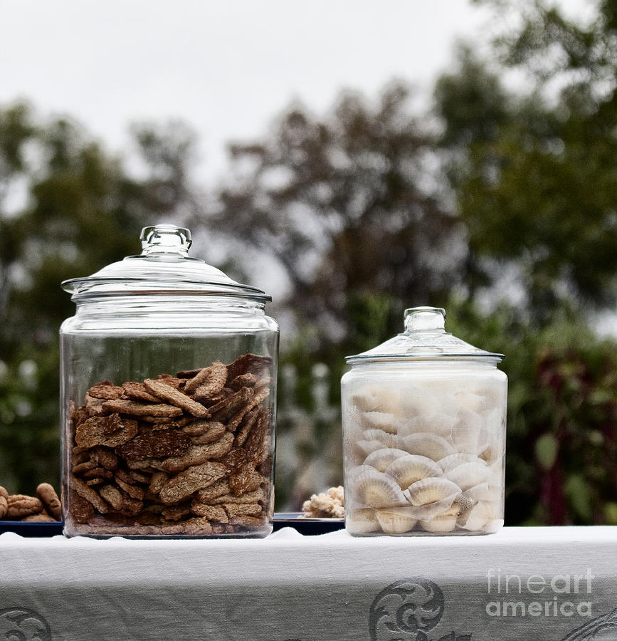 Still Life; Cookies; Jar; Outside; Table; Lace; Vintage; Sweets; Treats; Sale; Picnic; Two; Yummy; Food; Lids; Closed; Table Cloth; Outdoors; Bake; Baked Goods; Oatmeal; Sky; Overcast; Glass; Picnic Photograph - Treats by Margie Hurwich