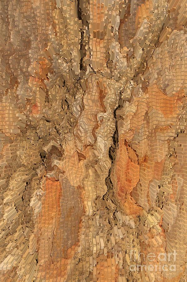 Tree Photograph - Tree Bark Abstract by Cindy Lee Longhini