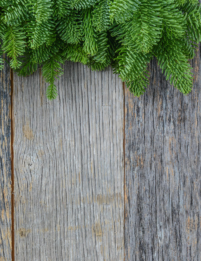 Tree Branch On Rustic Wooden Background Used For Christmas