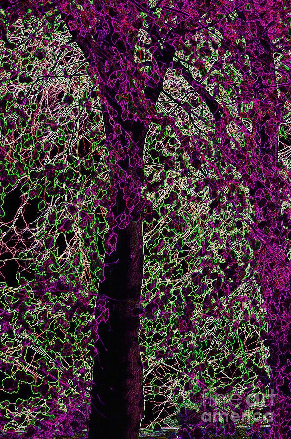 Purple Digital Art - Tree by Carol Lynch