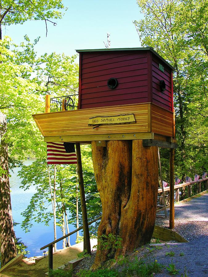Tree House Boat Photograph by Sherman Perry