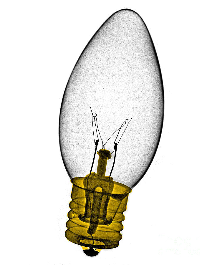Bulb Photograph - Tree Light Bulb X-ray by Bert Myers