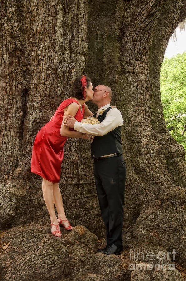 Wedding Photograph - Tree Lovers- Bride And Groom by Kathleen K Parker