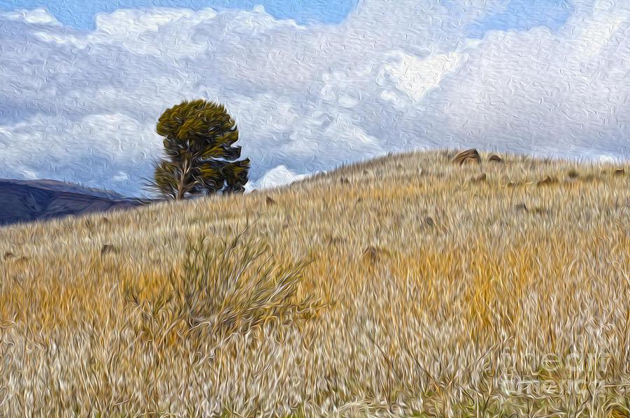 Landscape Digital Art - Tree On The Hill by Nur Roy
