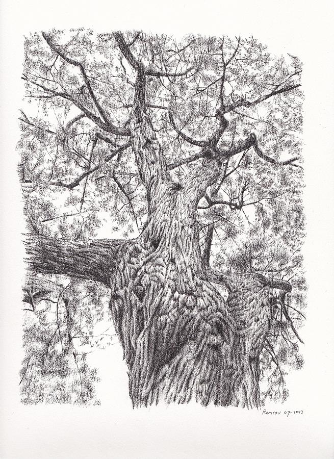 This is a photo of Delicate Tree Pen Drawing