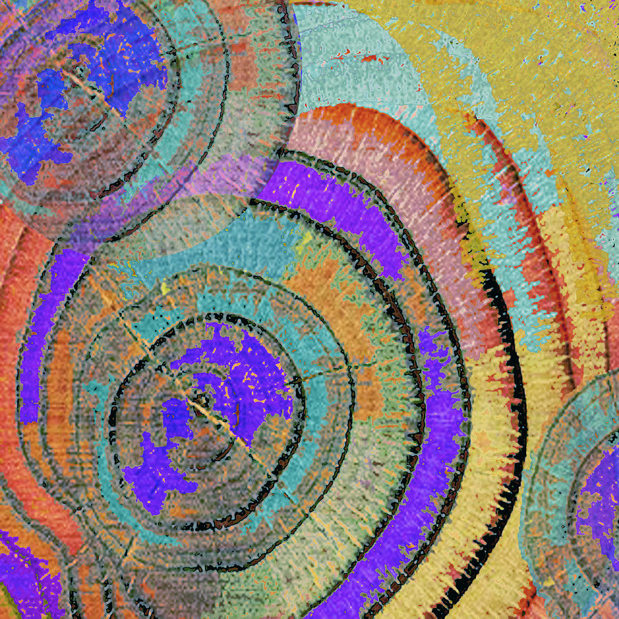 Abstract Painting - Tree Ring Abstract 3 by Tony Rubino