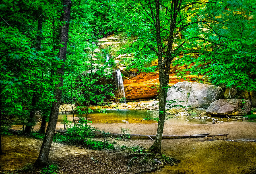Hocking Hills Photograph - Tree Roots by Optical Playground By MP Ray