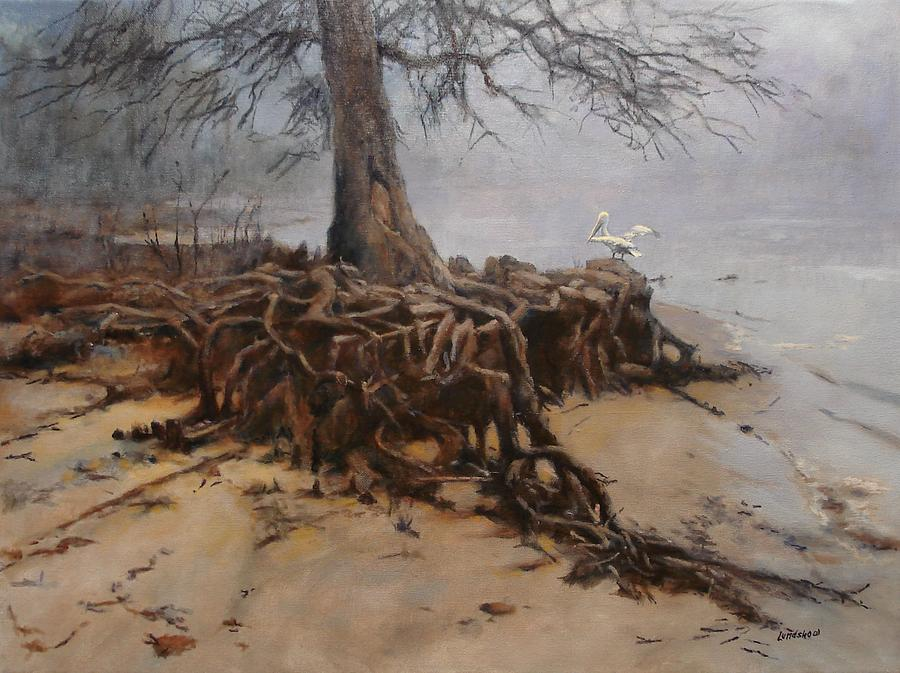 tree-roots-roger-lundskow.jpg
