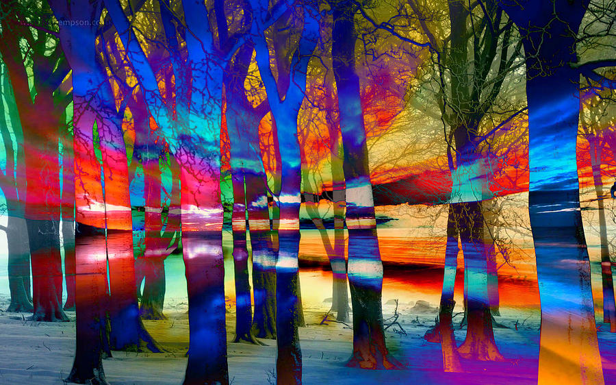 Digital Digital Art - Trees At Sunset Abstract Landscape by Mary Clanahan