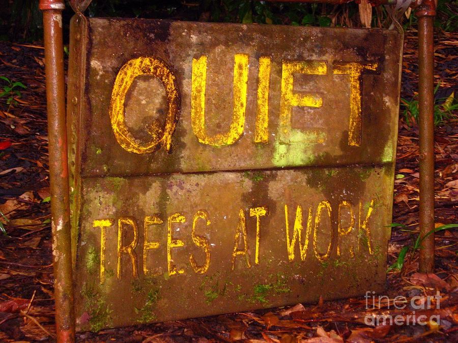 Quiet Photograph - Trees At Work by Christine Stack