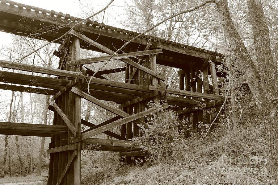 Trestle Photograph