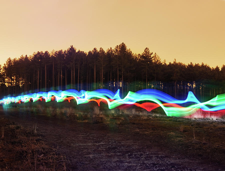 Tri-colour Light Trail In Heath Photograph by Tim Robberts