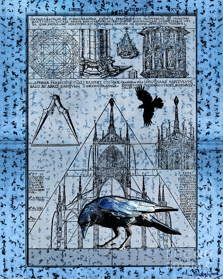 Crow Digital Art - Triangulation by Judy Wood