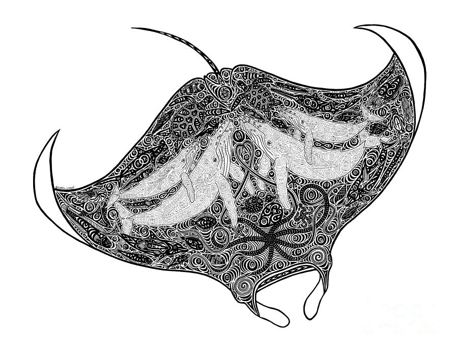 Tribal Manta Drawing By Carol Lynne