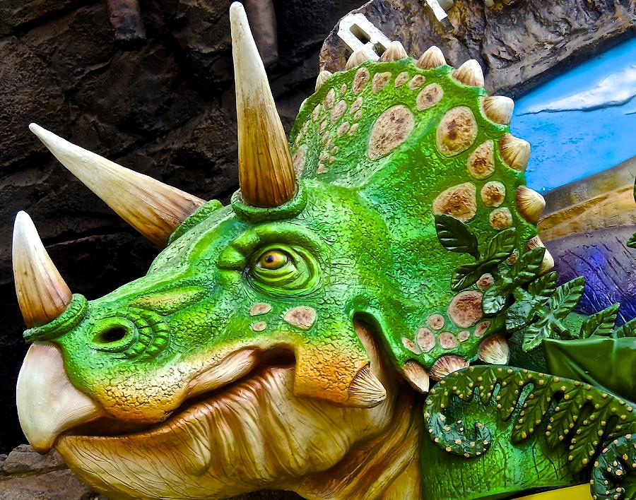 Triceratops Photograph by James MacNeil