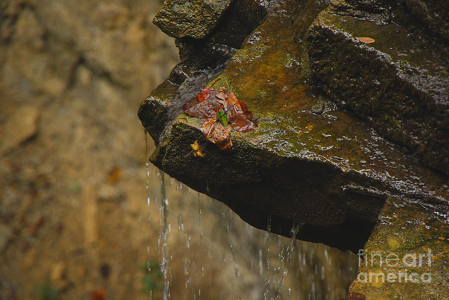 Water Photograph - Trickling Water by Mary Carol Story
