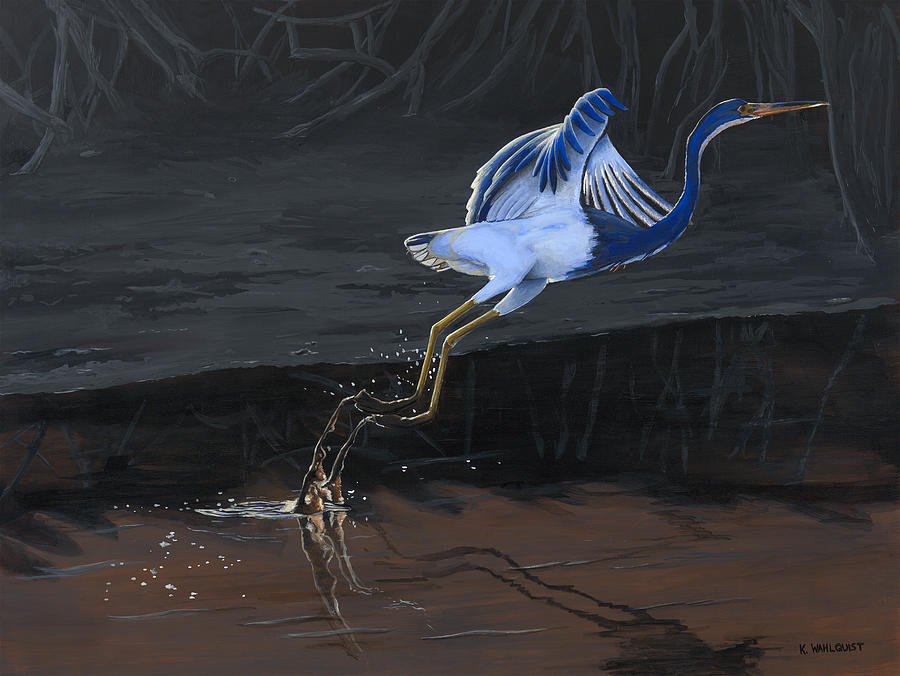 Bird Painting - Tricolored Heron by Kirsten Wahlquist