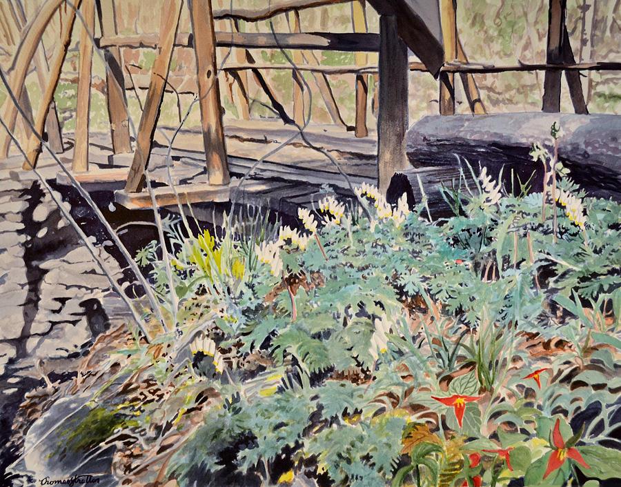 Flowers Painting - Trillium Bridge by Thomas Stratton