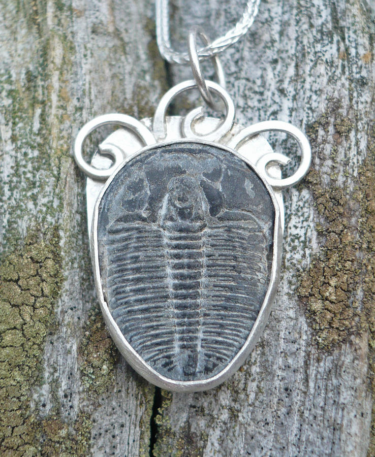 Fossil Jewelry - Trilobite With Spirals by Arianna Bara