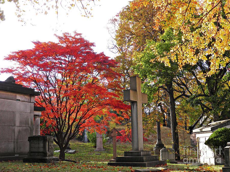 Trinity Cemetery Photograph - Trinity Cemetery by Sarah Loft