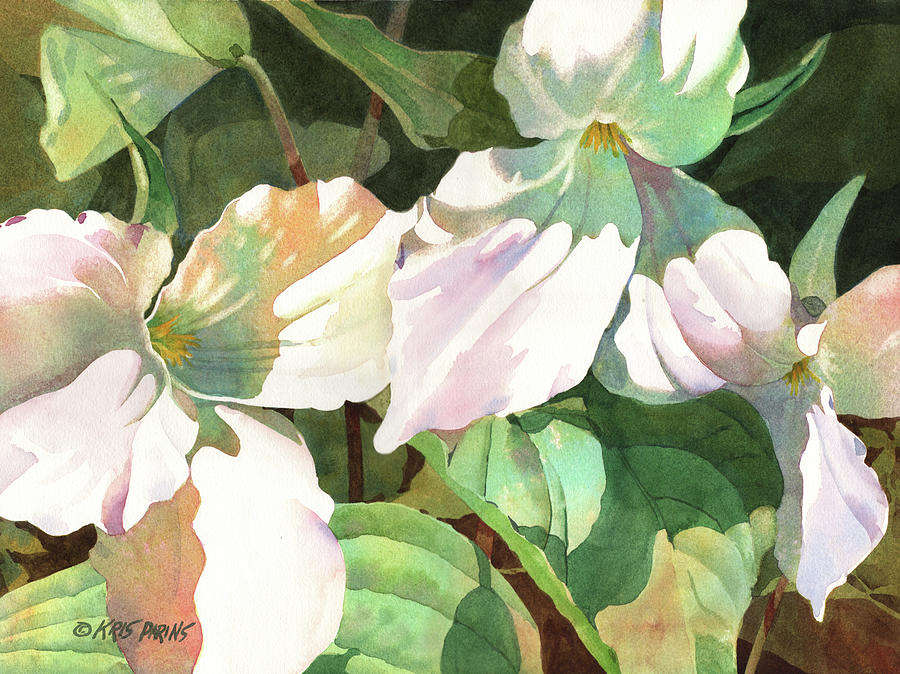 Watercolor Painting - Trio by Kris Parins