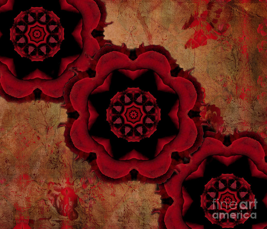 Red Photograph - Triple Red Rose #1 by Renata Ratajczyk