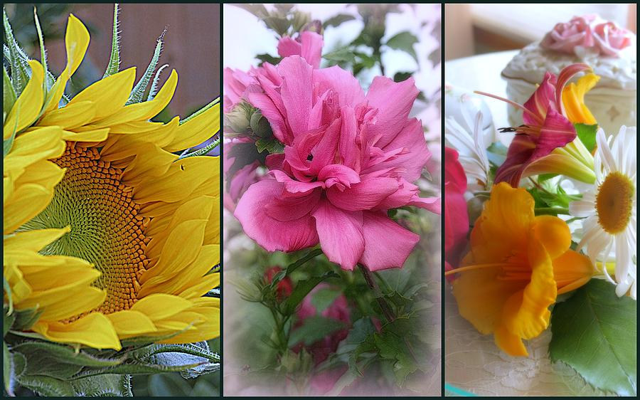 Wisconsin Photograph - Triptych Of Summer Florals by Kay Novy