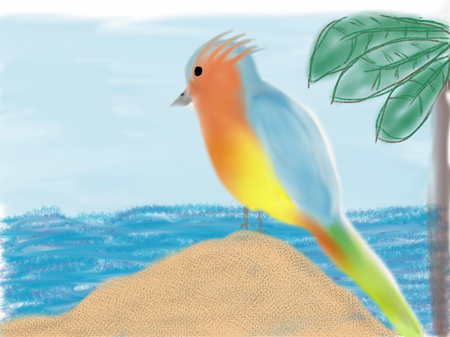 Bird Digital Art - Tropical by Barbara Marlin