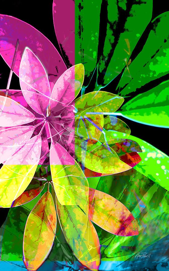 Tropical Photograph - Tropical Delight Two by Ann Powell