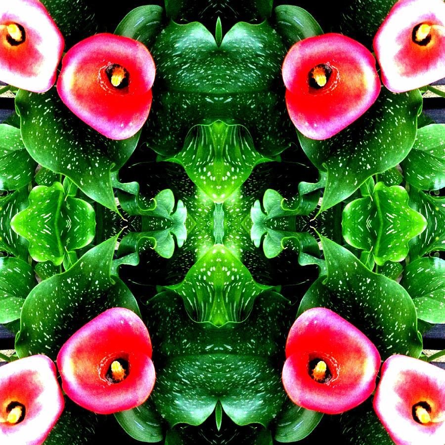 Leaves Photograph - Tropical Lush-us Abstract by Marianne Dow
