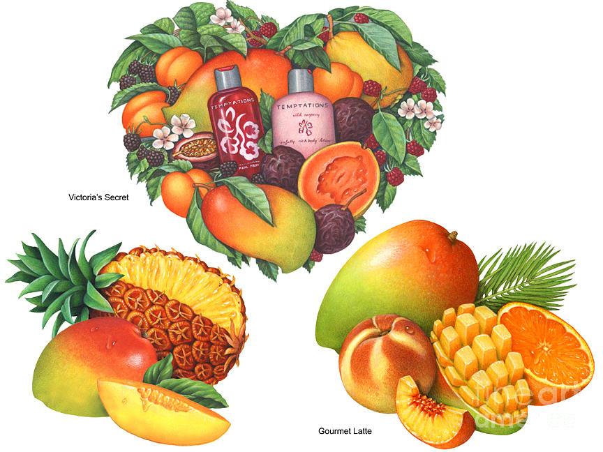 Mango Painting - Tropical Mango by Douglas Schneider