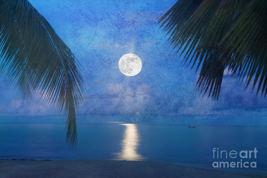 Seascape Photograph - Tropical Moonglow by Betty LaRue