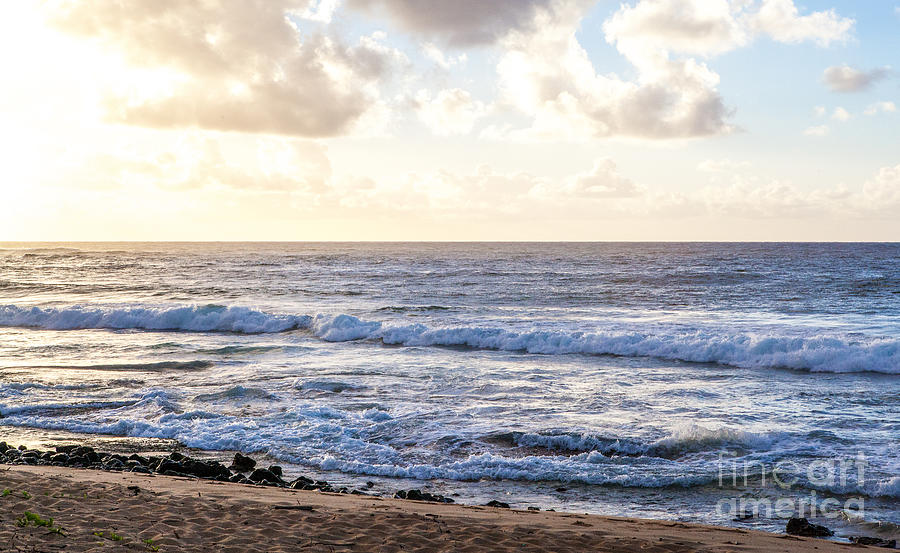 Kauai Photograph - Tropical Morning  by Roselynne Broussard
