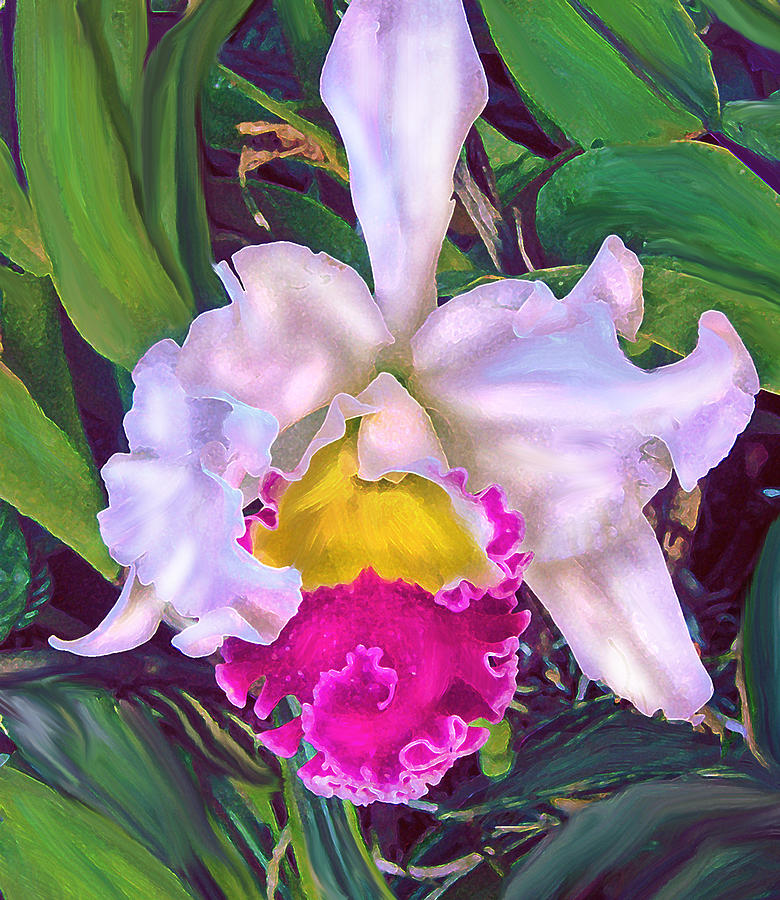 Orchid Digital Art - Tropical Orchid by Jane Schnetlage