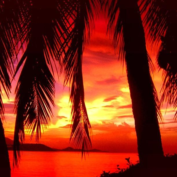 Thailand Photograph - Tropical Sunset - Thailand by Luisa Azzolini