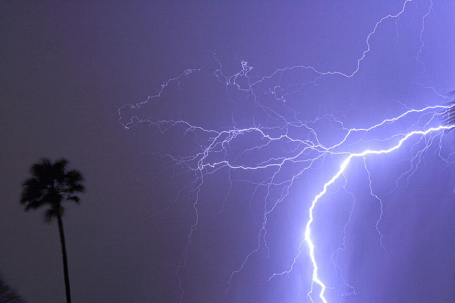 Lightning Photograph - Tropical Thunderstorm Night  by James BO  Insogna