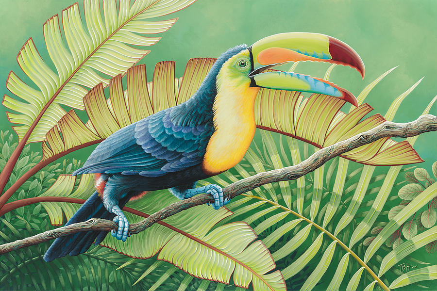 Tropical Toucan by Tish Wynne