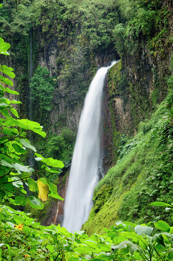Tropical Waterfall Framed By Lush Photograph by Ogphoto
