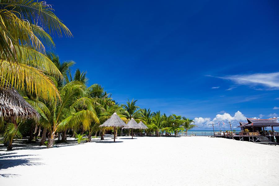 Bay Photograph - Tropical White Sand Beach Borneo Malaysia by Fototrav Print