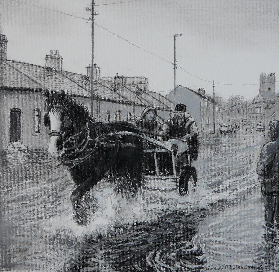 Trotters Drawing - Trotting Thro The Floods Limerick 2014 by Tomas OMaoldomhnaigh