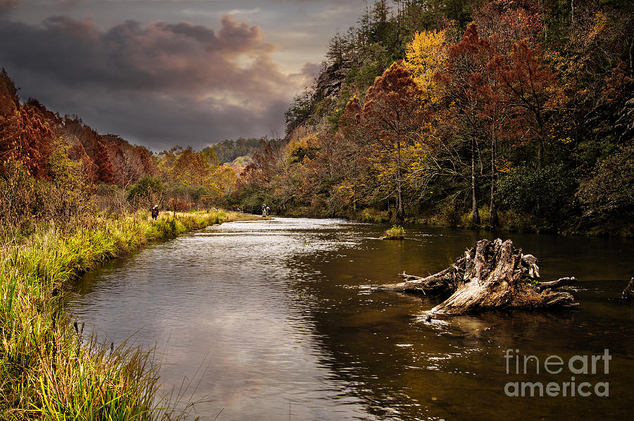Tamyra Ayles Photograph - Trout Fishing by Tamyra Ayles
