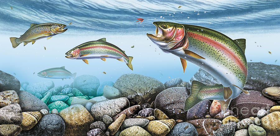 Jon Q Wright Painting - Trout Stream by JQ Licensing