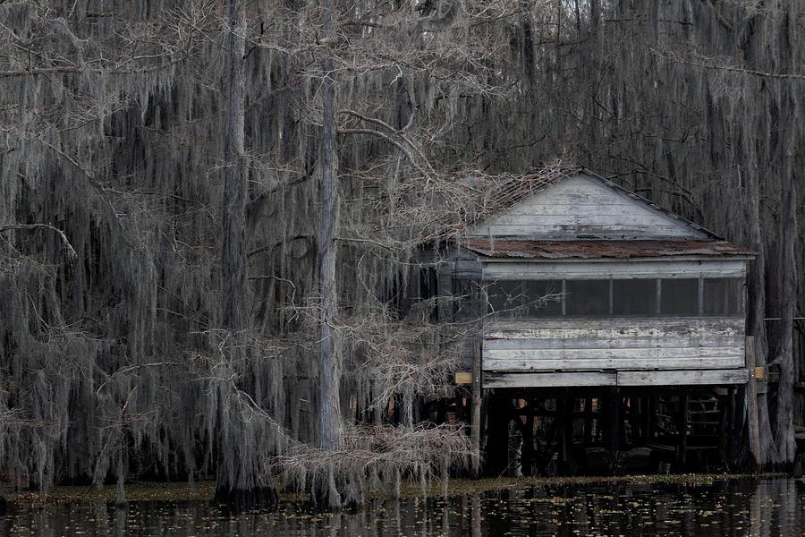 True Blood Stilt House Photograph