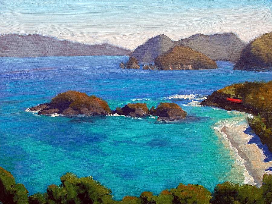 St. John Island Painting - Trunk Bay Overlook - St. John by Armand Cabrera