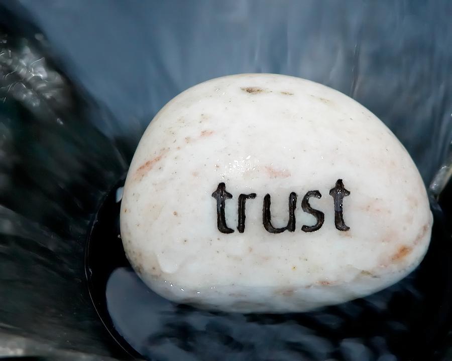 Trust 21074 Photograph
