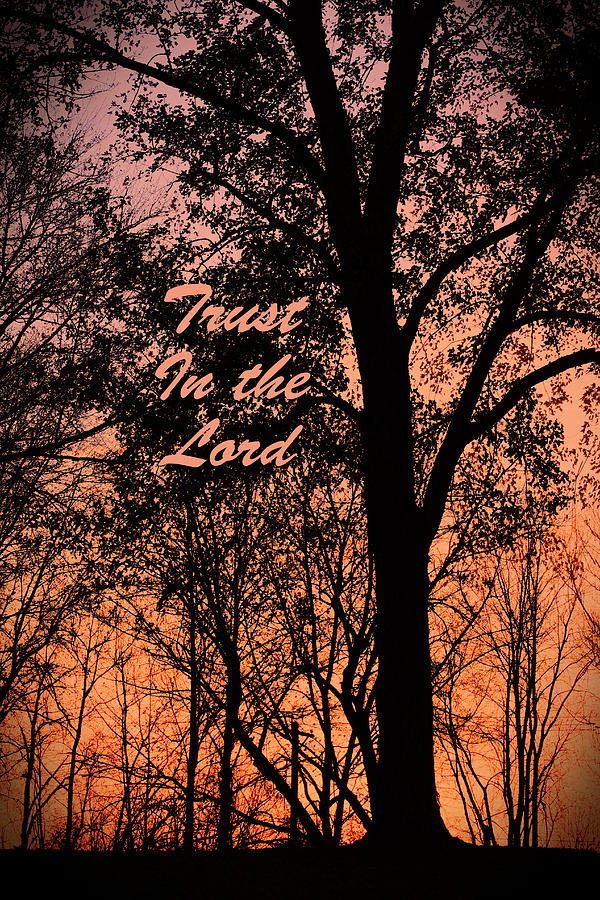 Trust In The Lord by Lorna Rose Marie Mills DBA  Lorna Rogers Photography