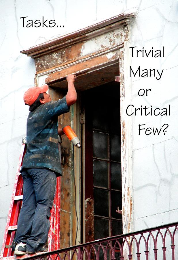 Trvial Many Or Critical Few 21159 Photograph