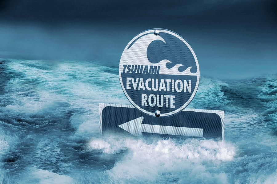 tsunami evacuation route sign photograph by tony craddock
