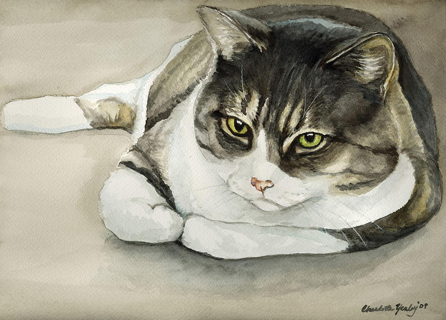 Cat Painting - Tubby by Charlotte Yealey